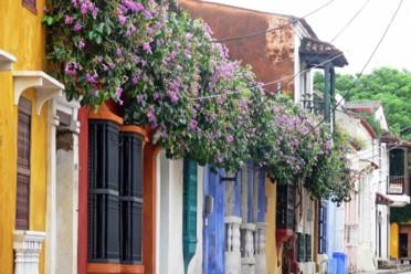 Viaggi Colombia Cafetera
