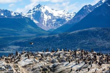 Viaggi Patagonia Australis