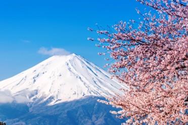 Viaggi Japan in love
