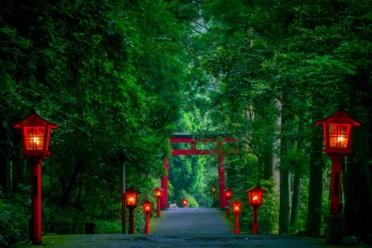 Viaggi Alla scoperta del Giappone