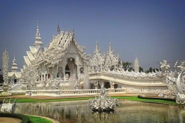 Viaggi Thailandia - Orchidea