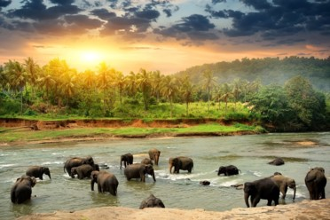 Viaggi Sri Lanka classico