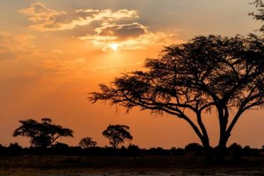 Viaggi Tanzania Experience