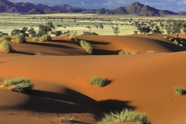 Viaggi The Best of Namibia