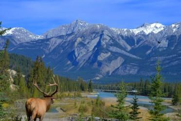Viaggi Canada