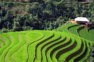 Viaggi Appassionatamente Vietnam