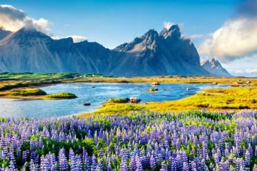 Viaggi Nuova Zelanda
