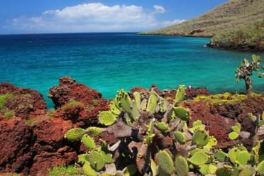 Viaggi Easy Ecuador e Galapagos