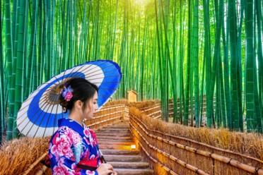 Viaggi Amazing Japan